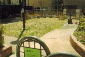 ポポー公園の雑草処理